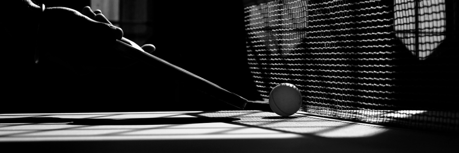 table-tennis-2010329_900x300.png